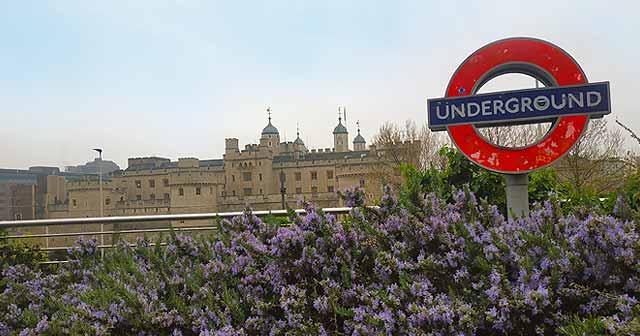 Que ver en Londres, la torre de Londres
